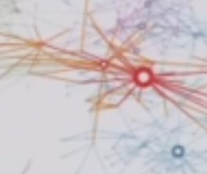 knowledge in a network